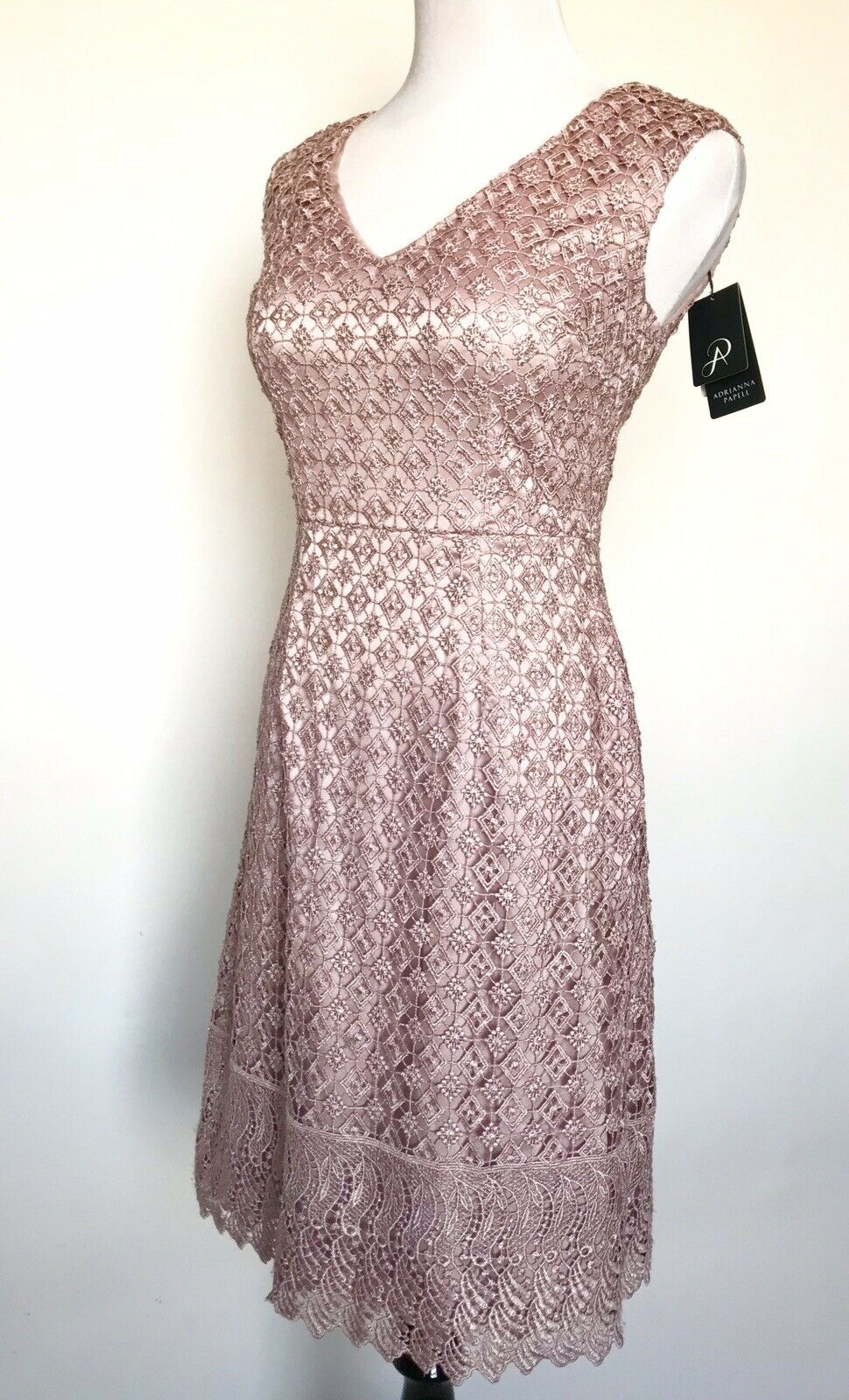 Adrianna Papell Pink Sateen Lace Dress NWT Size 2 Retails  179 Price  95