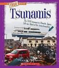 Tsunamis by Ann O Squire (Paperback, 2016)