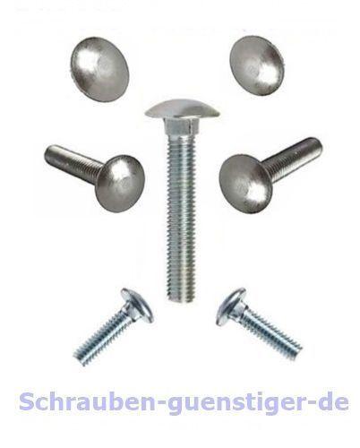 25 Stk Schloß-Schrauben 6 mm M6 DIN 603 Vollgewinde 6 x 45 Edelstahl A2