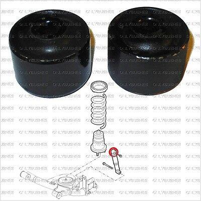 146302-G 2 Boccole barra stabilizzatrice Fiat Panda MALO/' 169