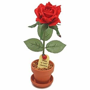 1st First Wedding Anniversary Gift Potted Paper Rose we have years 1 to 20 25 50