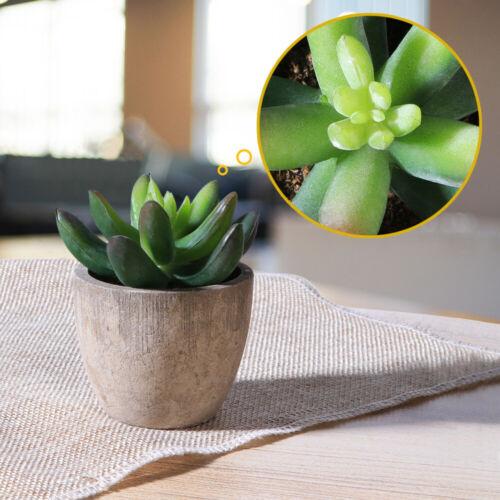 Set of 3 Artificial Succulent Plants Small Faux Cacti Indoor Outdoor Desk Decor