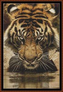 DRINKING-cross-stitch-pattern-PDF-point-de-croix-tiger
