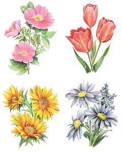 Malen Mit Buntstiften Kreativ Set Blumen 4 Bilder Komplettset 26