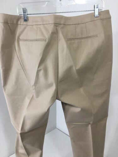 New Regno Beige Bodken 14 108 18 Twickenham Unito Pantaloni da Bootcut us Stretch donna UTwa7Fq0