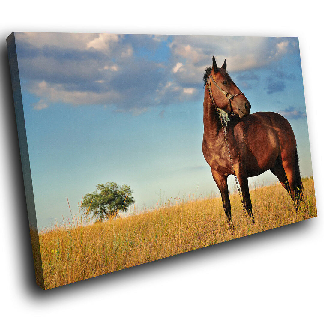 A319 braun Horse Tree Blau  Funky Animal Canvas Wall Art Large Picture Prints