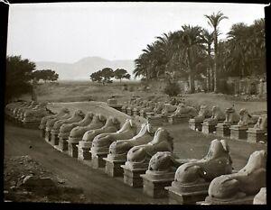 ANTIQUE Magic Lantern Slide KARNAK RAM SPHINXES C1910 PHOTO EGYPT