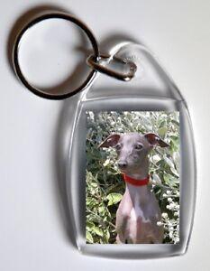 Italian-Greyhound-Dog-Key-Ring-By-Starprint-No-1