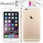 Apple iPhone 6S 64 GB Oro Gold GRADO AA+ Ricondizionato Come Nuovo + Accessori