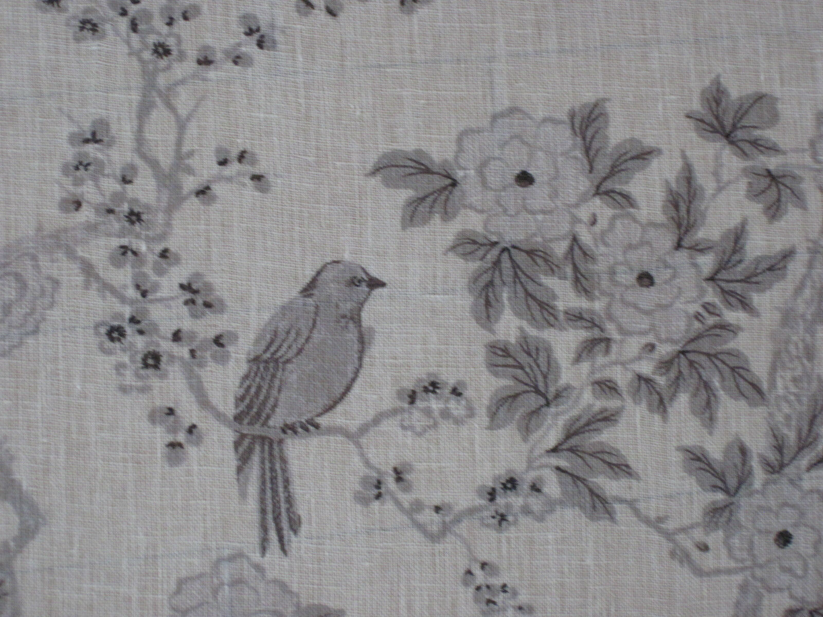 Ralph Lauren Curtain Fabric Marlowe Floral Sheer 1 55m Dove Grey