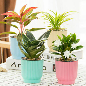 eBay & Details about Nursery Planter Self-watering Flower Pot Auto Water Absorption Can Garden Decor