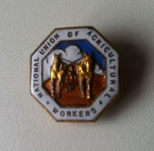 NATIONAL UNION OF ACRICULTURAL WORKERS Logo Knopfloch Abzeichen Reversknopf