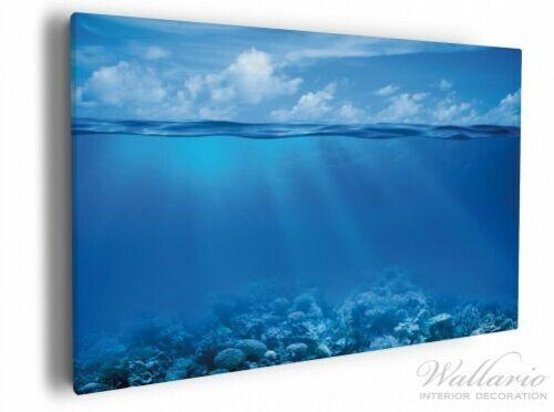 Wallario Leinwandbild 60 x 90 cm Unterwasserwelt Meer wasser meer sonne strahlen
