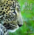 Big Five of Africa by Gerald Hinde (Paperback, 2008)