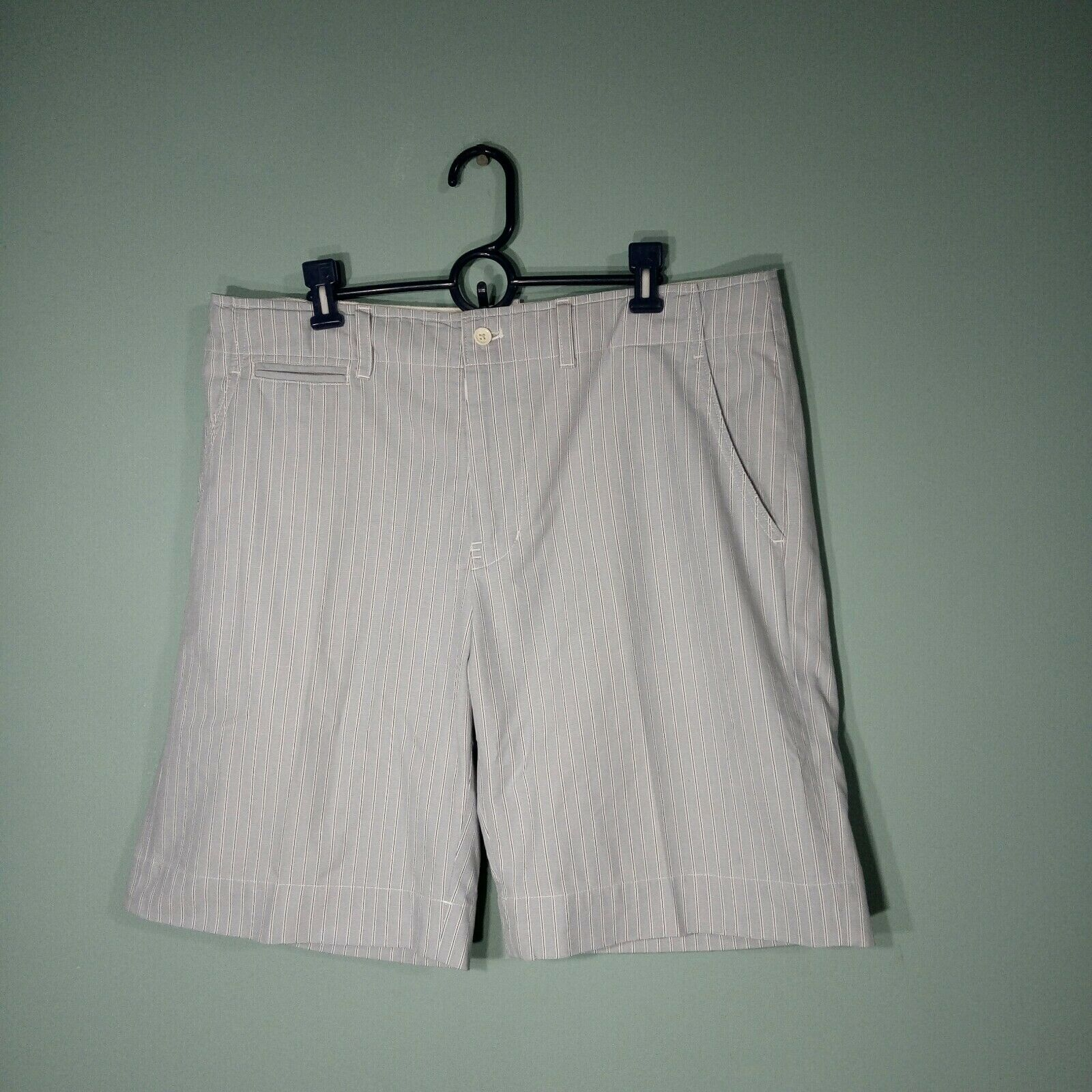 Polo Ralph Lauren Men's Shorts  Cotton Pinstriped  Size 36