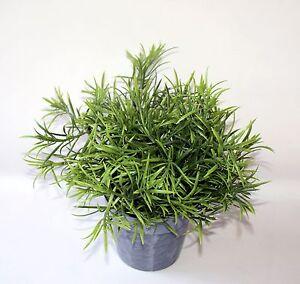 Bambus Bamboo Grunpflanze Zimmerpflanze Kunststoff H 22 Cm Ebay