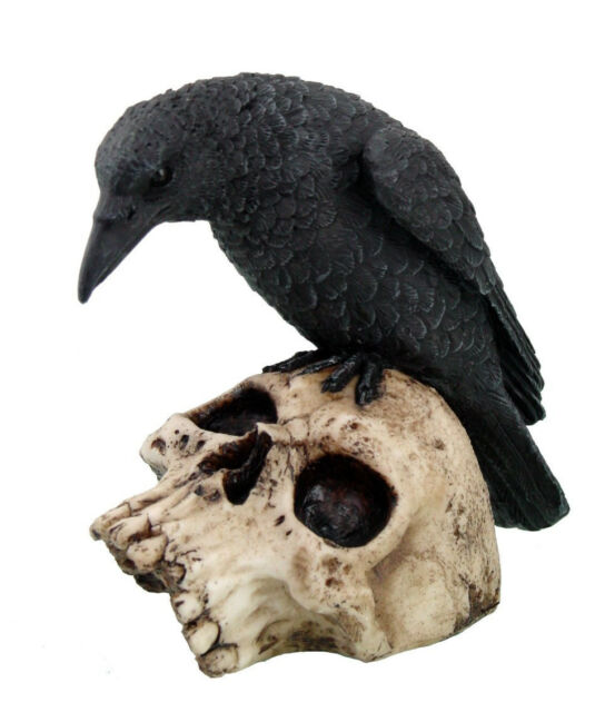 Black Crow Raven Lurking On Skull Head Sculpture Halloween Handpainted Figure
