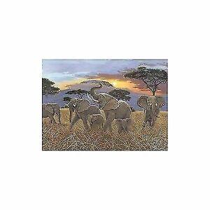 Malen nach Zahlen Sonnenuntergang am Kilimandscharo