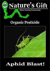Aphid Killer Organic Pesticide Insecticide For Aphids Bug Spray