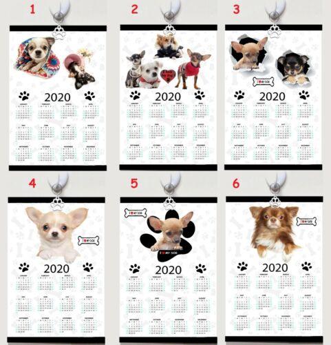 CHIHUAHUA  Kalender calendar 2020 Polyester Wandkalender Wall caledar