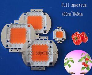 Dc12v 10w 20w 30w 50w 400 840nm Led Grow Chip Full