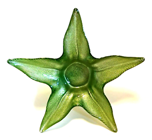 Star-Shaped-Bowl-Foiled-Lime-Green-Beach-Home-Decor-11-inches-Across