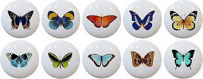 Set of 10 Butterflies Butterfly Cabinet DRAWER Pull KNOB Ceramic