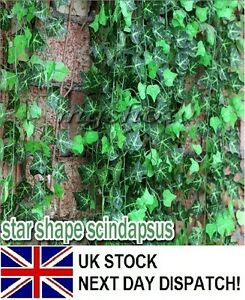 6-56ft-Artificial-Trailing-Ivy-Leaf-Garland-Plants-Foliage-Flowers-Home-Greenery