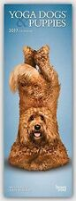Yoga Dogs & Puppies 2017 Slim Calendar