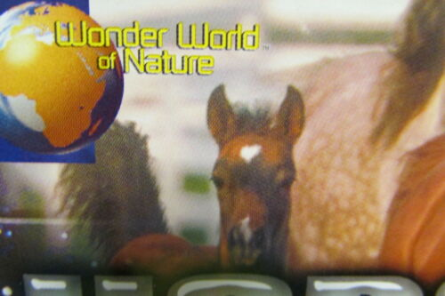 New In Package Horses World playset plastic horses with accessories Unopened