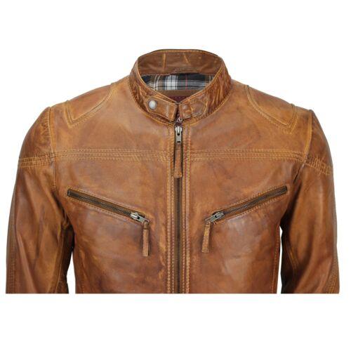 cuir ajustée véritable brun Veste homme clair motard pour en Rxqw7wvz