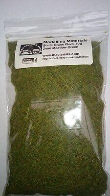 Choose 2mm Or 4mm Free First Class Post Static Grass Flock Rich Green 50g