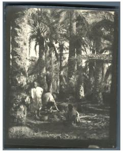 Algerie-Scene-sous-les-palmiers-Vintage-silver-print-Tirage-argentique