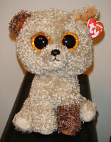 Ty Beanie Boos Rootbeer The 9 Medium Size Dog Plush Mint With Mint Tags