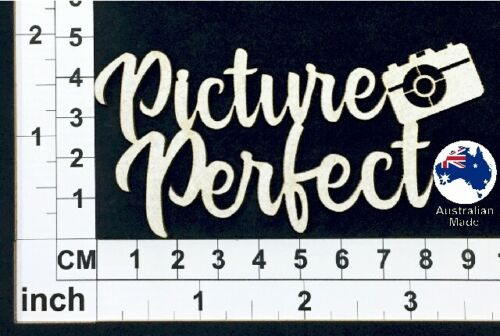 Cardmaking Picture Perfect CT041 Chipboard Words for Scrapbooking