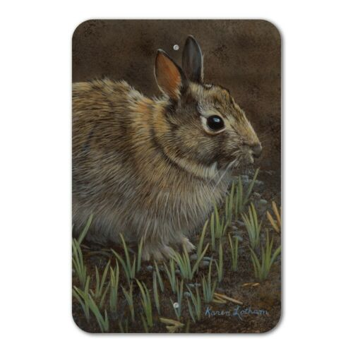 Backyard Bunny Rabbit Hare Home Business Office Sign