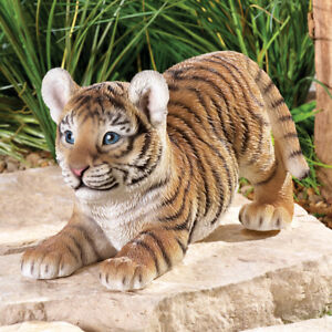 Image is loading Adorable-Baby-Tiger-On-The-Prowl-Indoor-Outdoor-