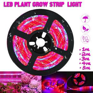 USB LED Wachstumslampe Stripe Voll Spektrum SMD 5050 LED Pflanzenlamp Streifen