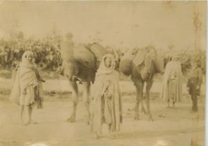 Tunisie-chameaux-vintage-albumen-print-Tunisia-Tirage-albumine-10x14-C