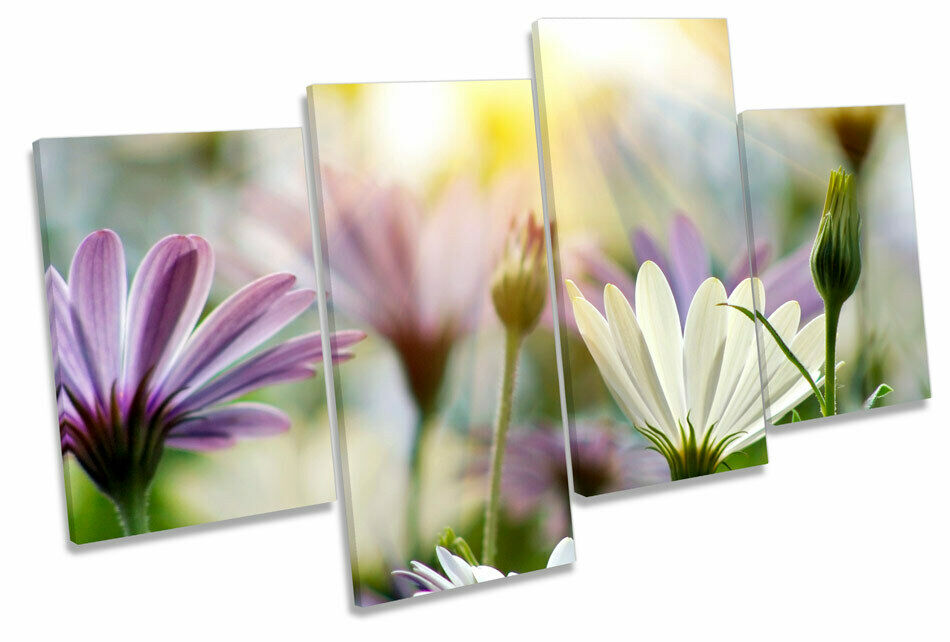 Summer Floral Meadow Scene MULTI CANVAS WALL ART Picture Print