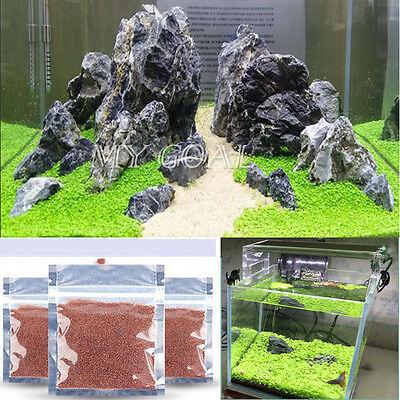 Aquarium FishTank Plant Seed Glossostigma Elatinoides Hemianthus Callitrichoides