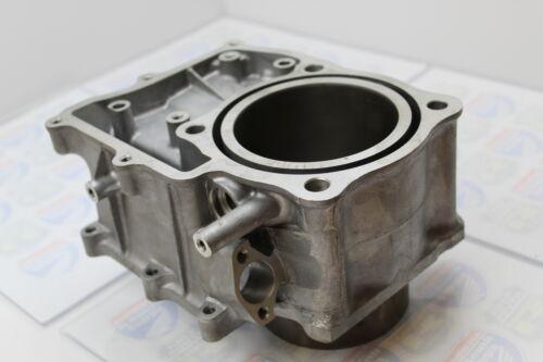 OEM ENGINE CYLINDER JUG 12100-HN2-000