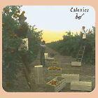 Spoke by Calexico (Vinyl, Mar-2009, Quarterstick)