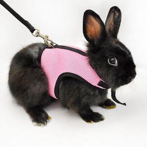 Outdoor-Hamster-Rabbit-Squirrel-Cat-Guinea-Pig-Mesh-Harness-Leash-Lead-Vest-Suit