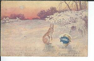 AY-172-Snowdrift-Shortening-1901-1907-Undidvided-Back-Advertising-Postcard