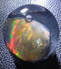 Gorgeous 17.1 ct Precious Opal Gem From Virgin Valley Nevada. Stunning Gem!