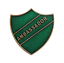 Ambassador Green Pin Badge For Schools