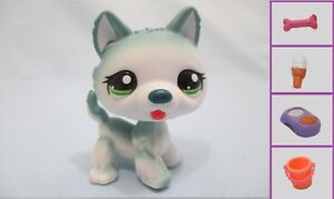 Littlest Pet Shop Rare Puppy Dog Husky 1563 Free Accessory Authentic