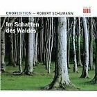 Robert Schumann - Schumann: Im Schatten des Waldes (2011)
