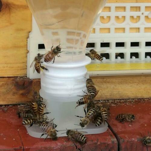Plastic Bee Feeder Water Drinking Fountain Jar Beekeeper Beekeeping Tool